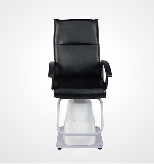 YS-1A Electric Lift Chair